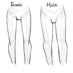 how to draw anime anatomy step 4