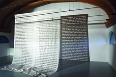 Rosa Barba  Uses text and innovative installations of film projectors.
