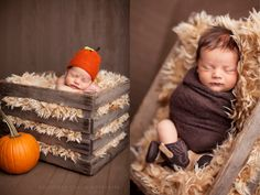thanksgiving newborn photography | Little Turkey- Knoxville Newborn Photography « Baby Plan « Southern ...
