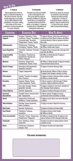 Do you want to know which Young Living Essential Oils work for what conditions? Try our Young Living Essential Oils Updated Usage Reference Cards. Essential Oils For Massage, Essential Oils For Colds, Young Living Essential Oils, Essential Oil Blends, Essential Oils Uses Chart, Blue Tansy Essential Oil, Ravintsara, Living Essentials, Aromatherapy Oils
