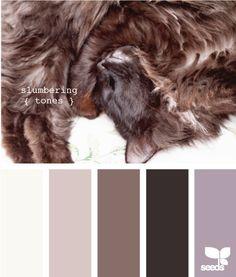 Catsparella: Pussycat Inspired Paint Palettes