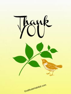 Gratitude unlocks the fullness of life.  Thank you Pinterest friends for all your wonderful images. #Thank-you