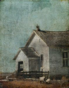 1000 Images About Artist Jamie Heiden On Pinterest Wisconsin The Driftless Area And Watercolors