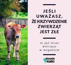 Ściągnij bezpłatną broszurę na temat diety wegańskiej: www.otwarteklatki.pl/starter-dobre-decyzje/