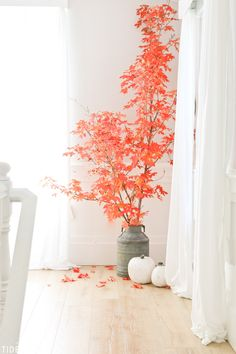 A season as naturally beautiful as Autumn deserves to be inside and outside. See how I've used Fall leaves and branches in my decor, to bring in the rich vibrant colors without spending a dime. Autumn Decorating, Porch Decorating, Fall Home Decor, Autumn Home, Shabby Chic Fall, Branch Decor, Fall Nail Designs, Fall Diy, Dream Decor