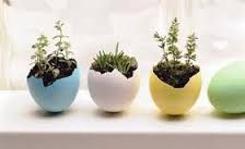 DIY Easter crafts can add some fun to your family's springtime celebration. Try out Incredible Egg's fun Easter egg craft ideas for you and your kids. Easter Craft Activities, Easter Egg Crafts, Easter Eggs, Easter Projects, Easter Ideas, Egg Shell Planters, Hanging Planters, Hanging Gardens, Incredible Eggs
