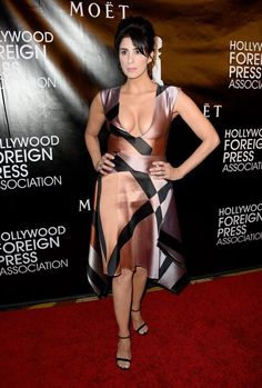 Sarah Silverman - Hollywood Foreign Press Association : Global Celebrtities (F) FunFunky.com