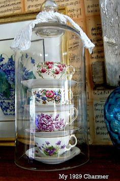My 1929 Charmer, teacups under cloche!