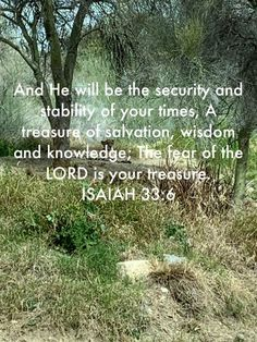 Fear Of The Lord, Scriptures, Knowledge, Wisdom, Consciousness, Verses, Bible Verses, Scripture Verses