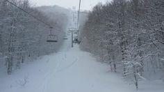 Cimone Sci (ski area) - Sestola