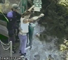 Never hesitate at a bungee jump cos you will go down anyways - this video is soooo funny