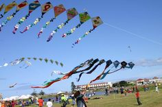 Cape Town International Kite Festival | November | Zandvlei Picnic Area | off The Row and Axminster Road Muizenberg Activities In Cape Town, Picnic Area, Places Of Interest, The Row, South Africa, Indoor Outdoor, Dolores Park, Fair Grounds, Kites
