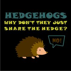 Hedgehogs! Why don't they just share the edge?