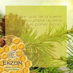 #Ekzon #TúEstilo #Bisuteria #Paracord ekzon.com.mx whatsapp: 4444254676