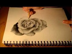 How to Draw a Realistic Rose - Speed Drawing Tutorial