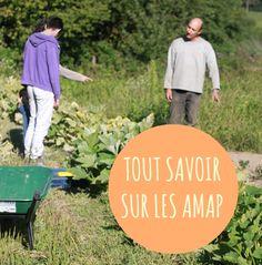 AMAP_comment_ca_marche