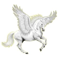 Pegasus Arabian Horse Dapple Gray