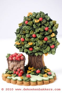Apple Picking - So Beautiful!