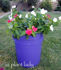 Use a 5 gallon bucket as a plant container.  (Put the plant in a burlap sack, don't poke hole in the bucket, and you have a pretty good self-watering container.)