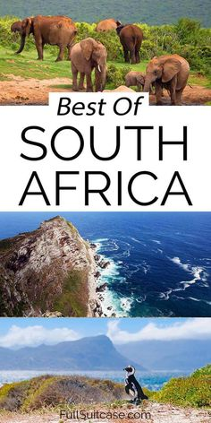 Most beautiful places in South Africa - ultimate list of the best things to see and do in South Africa. Find out! South Africa Map, Visit South Africa, South Africa Safari, Yogyakarta, Best Places To Travel, Cool Places To Visit, Kerala, Tsitsikamma National Park, Bali