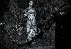 In this image I putted together two different objects from Birr Castle. Chain fence from Birr Castle entrance and statue from Birr Castle Demesne gardens. Chain Fence, Medieval, Objects, Castle, Statue, Wall Art, Entrance, Ireland, Photography