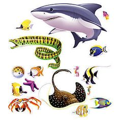 Our Marine Life Add On Props has the creatures you would see under the sea including: a Great White Shark, a brown string-ray, an orange crab, a green striped eel.
