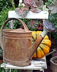 Vintage French Autumn Colored Watering Can-antique, brown,fall,patina, wateringcan,herb,copper, rose,country,