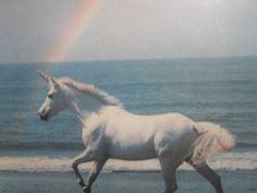 I can ride unicorns : )