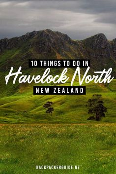 10 Excellent Things to Do in Havelock North - NZ Pocket Guide New Zealand Travel Guide North Island New Zealand, South Island, Cheap Things To Do, Stuff To Do, Havelock North, New Zealand Holidays, New Zealand Travel Guide, Bay News, Heart For Kids