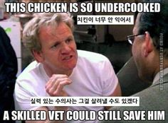 Restaurant Kitchen Humor resultado de imagen para frozen memes español | funny | pinterest
