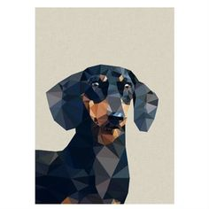Framed Graphic Dachshund Print