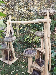 Outdoor Cat Tree, Cat Wall Furniture, Cat Castle, Diy Cat Tree, Cat Run, Cat Playground, Cat Garden, Cat Enclosure, Cat Bedroom