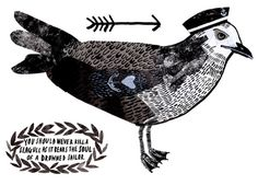 """""""You Should Never Kill a Seagull as It Holds the Soul of a Drowned Sailor"""" by Alice Pattullo"""