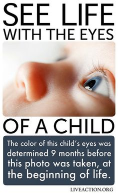 See life with the eyes of a child. Eye color is determined long before birth! #prolife