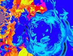 Rose in Blue  Fotopainting