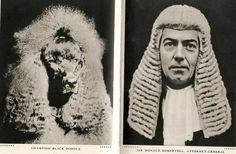 Popular image-online comparison, it turns out, existed long before the Internet. The British magazine Lilliput published them in the and' Berlin Art Parasites, British Magazines, Architecture Photo, View Image, Poodle, History, Portrait, Fun, Photography