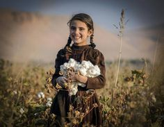 An #Afghan girl harvests cotton buds at a field on the outskirts of Balkh province.