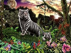 Hidden 10 tigers images by Stephen Michael Gardner will expand your mind and balance your brain hemispheres.