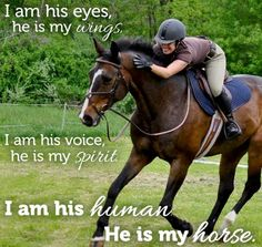 Equestrian Quotes and Sayings My horse Horse quotes Funny Horses, Cute Horses, Horse Love, Beautiful Horses, Beautiful Gorgeous, Equine Quotes, Equestrian Quotes, Equestrian Problems, Citations Photo