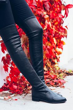 perfect over-the-knee boots