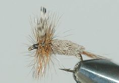 FLY FISHING FLIES 40 FAVORITE DRY FLY PATTERNS & PARACHUTES ADAMS, ROYAL COACHMAN,B.W.O #s 8-18