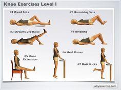 Level 1 Knee exercises: Illustrated therapeutic strengthening exercises