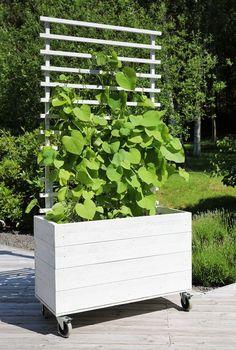 5 tips for landscaping a small garden - HomeDBS Balcony Garden, Garden Planters, Garden Boxes, Back Gardens, Outdoor Gardens, Cerca Natural, Diy Jardin, Garden Cottage, Small Patio