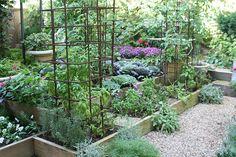 Google Image Result for http://garden-designs.org/wp-content/uploads/2011/07/kitchen-garden-design2.jpg