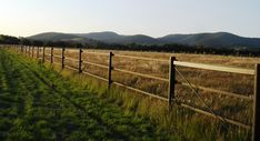 Beautiful example of StockGuard electric fencing in Victoria's Macedon Ranges. Horse Fencing, Fences, Electric Fencing, Timber Posts, Macedon Ranges, Horses, Outdoor, Beautiful