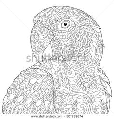 Stylized macaw (ara) parrot, isolated on white background. Freehand sketch for adult anti stress coloring book page with doodle and zentangle elements.