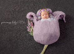 Beautiful newborn baby girl as a purple flower / tulip. Precious Baby ImaginArt by Angela Forker creative photography unique amazing cute funny Fort Wayne New Haven Indiana