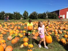 7 Activities Your Family Will Love This Fall in Grand Rapids