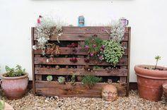 Brill palette planter idea