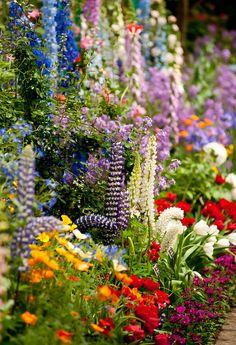 Monet's Garden ~ Giv Beautiful gorgeous pretty flowers Dream Garden, Garden Art, Garden Plants, Garden Design, Garden Cottage, My Secret Garden, Secret Gardens, Parcs, Garden Inspiration